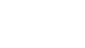 Humane Society of South Mississippi Web Design
